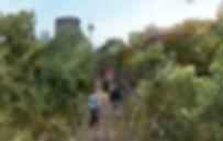 Taman-Tugu-VIew-2-CAnopy-Walk.jpg
