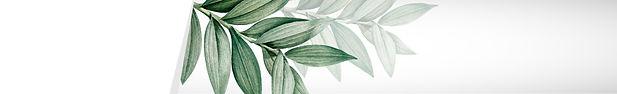 leafy-3-01.jpg