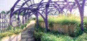 mooool-Ramathibodi-healing-garden-13.jpg