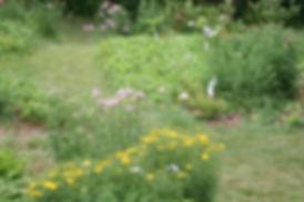gardens at Open Spirit