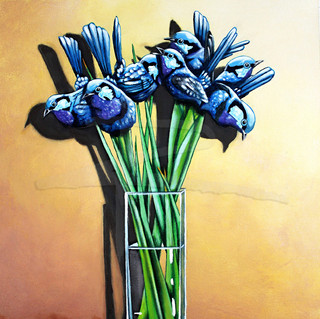 Splendid Blue Wren Irises