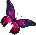pinkbutterfly.png