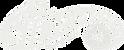 Sidewinder Logo.png