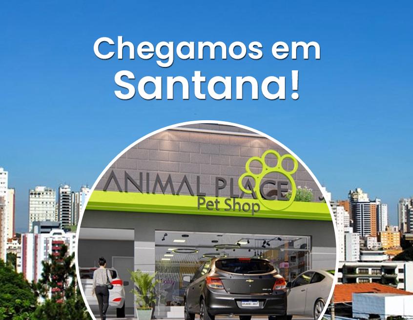 BANNER-Santana1.png