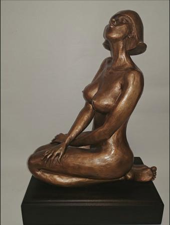 windy pink(42x33x15)bronze