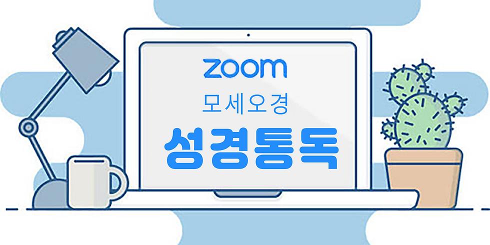 Zoom 줌 성경통독