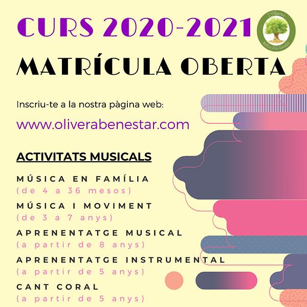 Cartell_Matrícula_20-21.png