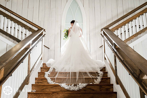"""118"""" Delicate Lace Edge - Soft Tulle, Single Layer Veil"""