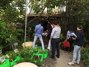 カンボジア プノンペン | 工場 生産施設 建設工事のランドスケープ | 建設プロジェクトマネジメント(PM)・建築設計・工事監理 | COCOCHI DESIGNS ココチデザイン