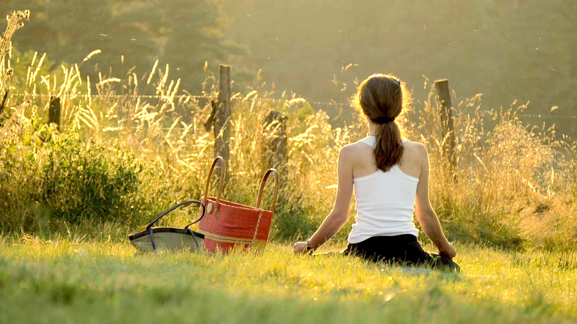 Programme Mindful France ®