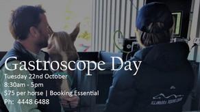 Gastroscope Day