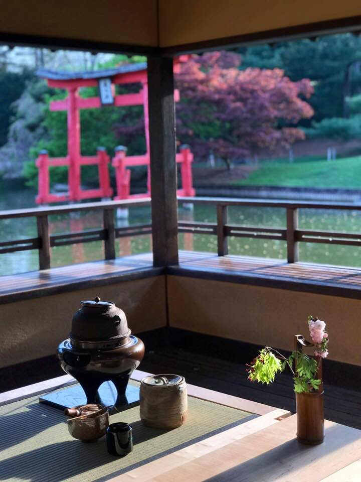"Tea ceremony at the view pavilion in the Brooklyn botanic garden. All of us had tranquil moment with beautiful breeze and view. Tea bowls "" せせらぎ"" and Mizusashi (water container) —made by Sawami Aoko Tea —Organic matcha ""Heisei no Mukashi"" 平成の昔 Sweets —- Purple yam "" Hana no yoi"" 花の宵 made by myself Tea scoop — Daitokuji Zuiho-in Shodo Maeda ""Mio Tsukushi"" 澪標 Tea stage — designed by Globus Washitsu. Made by Miya Shoji"