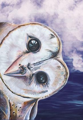 PRINT - Ruru Owl