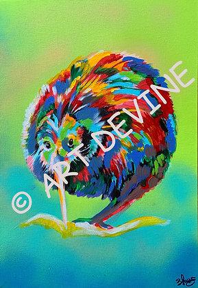 PRINT - Kiwi