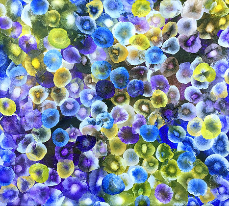 Aqueous Bloom VIII - Original Painting