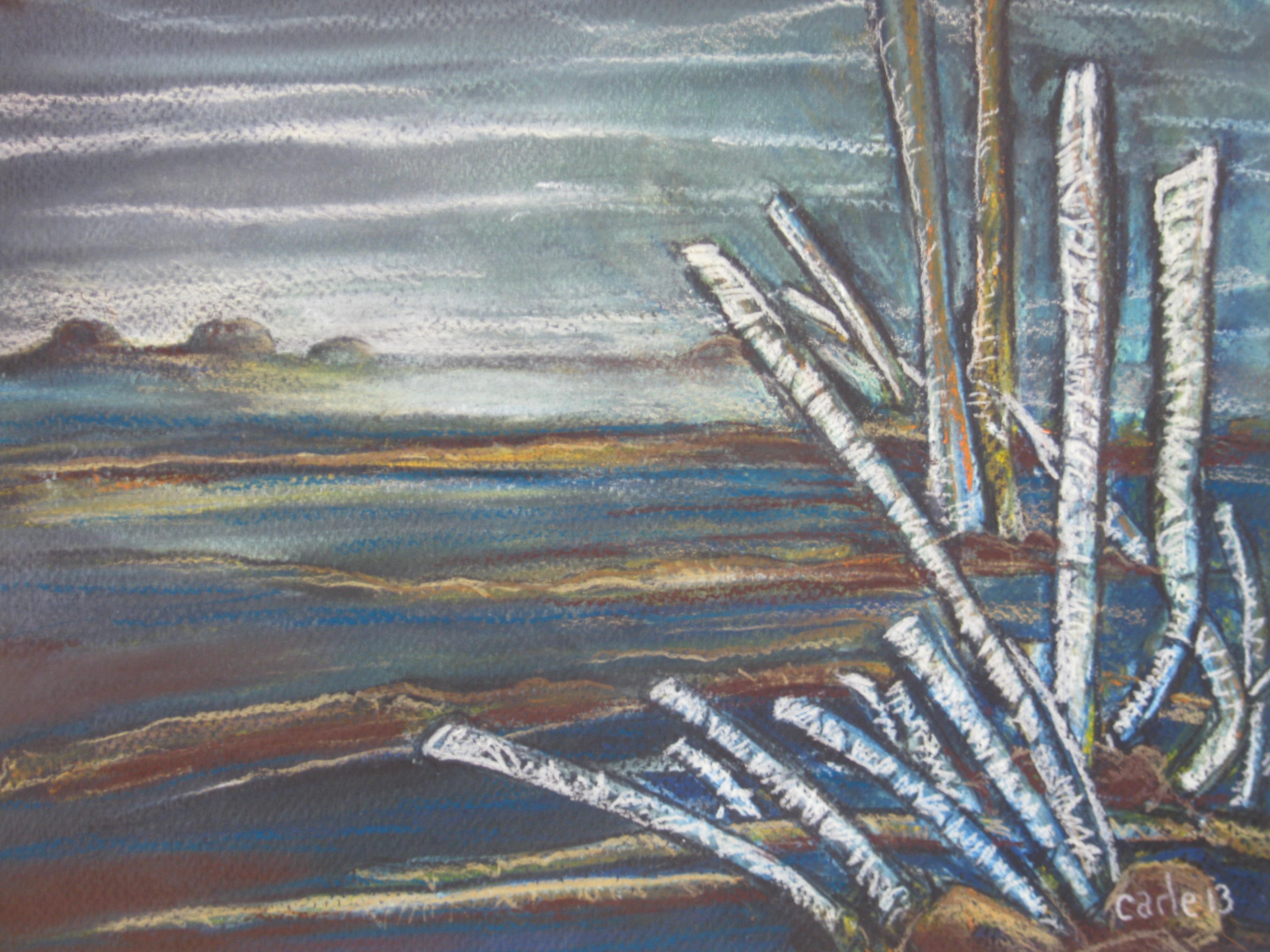 Carle Amyot, paysage x