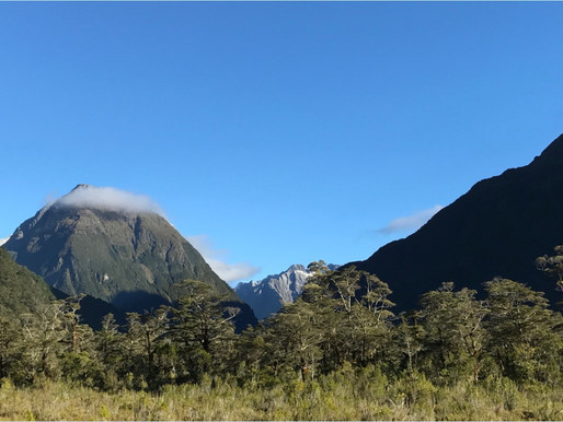 Milford Track–Part One by Olivia H.