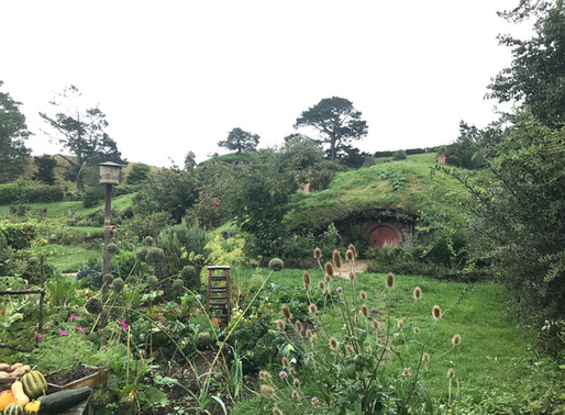 Hobbiton-The Lord of the Rings, Winter 2018