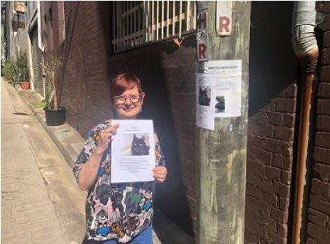 Cat Ripper prowls by Will Fournier, Alt Media Newspaper (Australia)