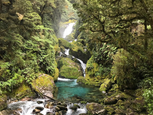 Milford Track–Part Three by Olivia H.