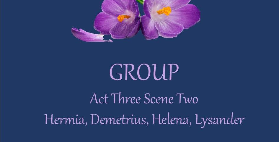 Hermia, Demetrius, Lysander, Helena