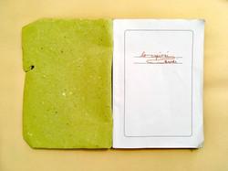 Svea Bischoff Light Green Book 2018