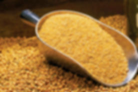 bulk-cattle-feed-soybean-meal.jpg