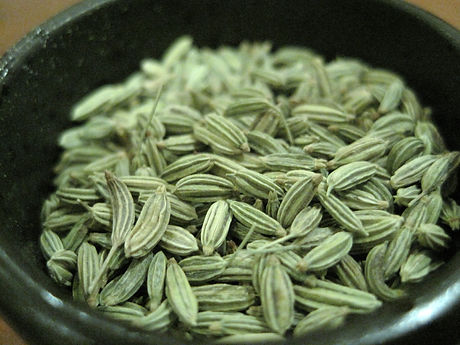 fennel-seeds.jpg