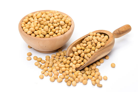 Soybean-seeds.jpg