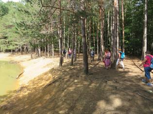 En forêt de Sénart par un beau dimanche