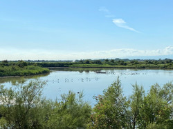 RISERVA NATURALE VALLE CANAL NOVO