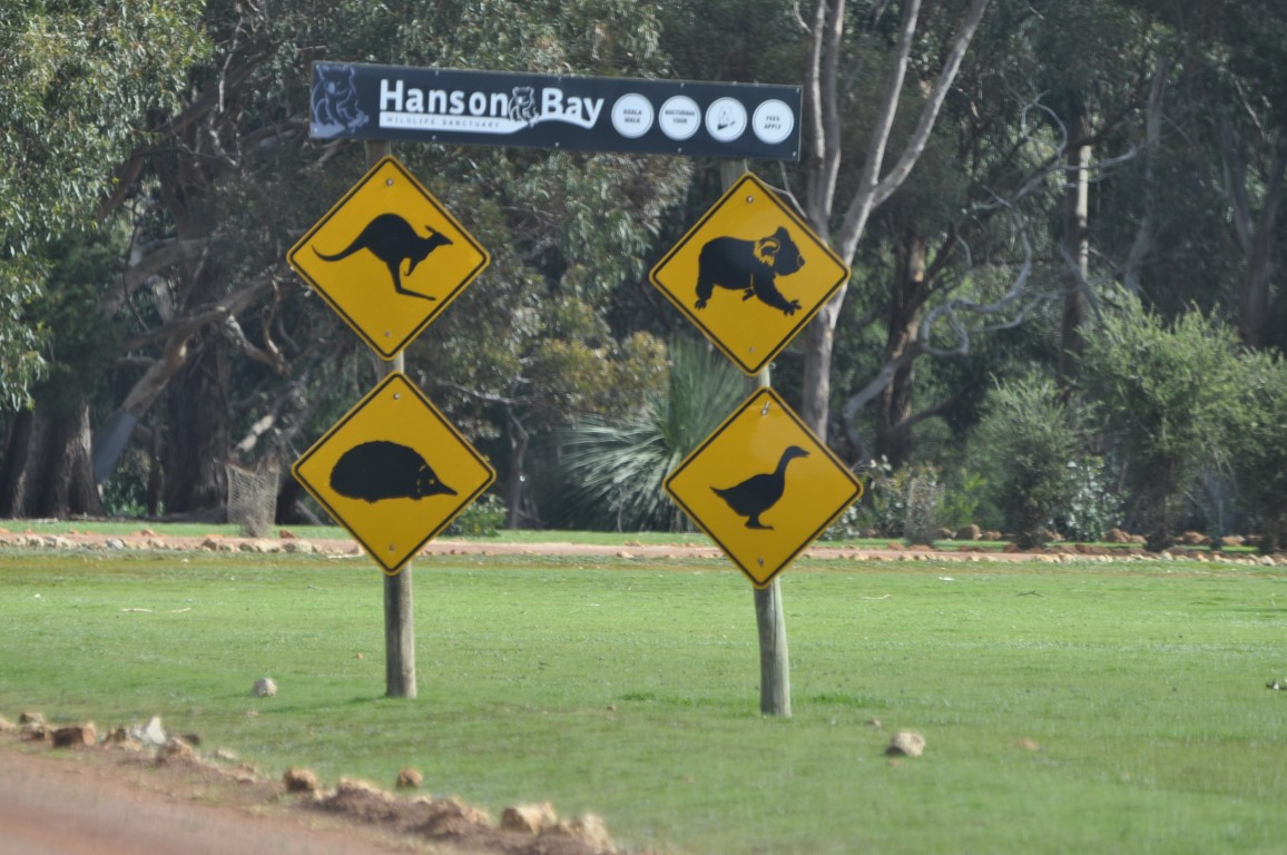 HANSON BAY WILDLIFE SANCTUARY