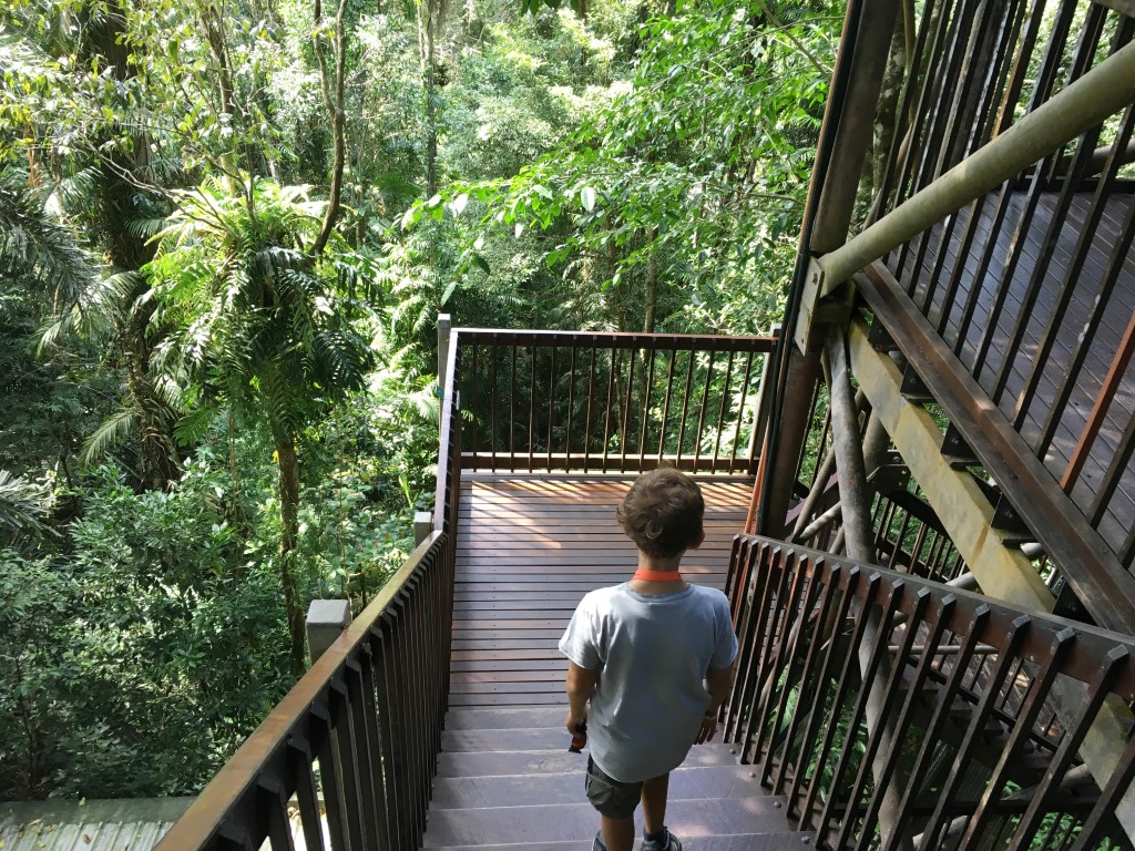 DAINTREE DISCOVERY CENTER