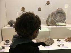 MUSEO DELLA SCIENZA PRINCIPE FELIPE