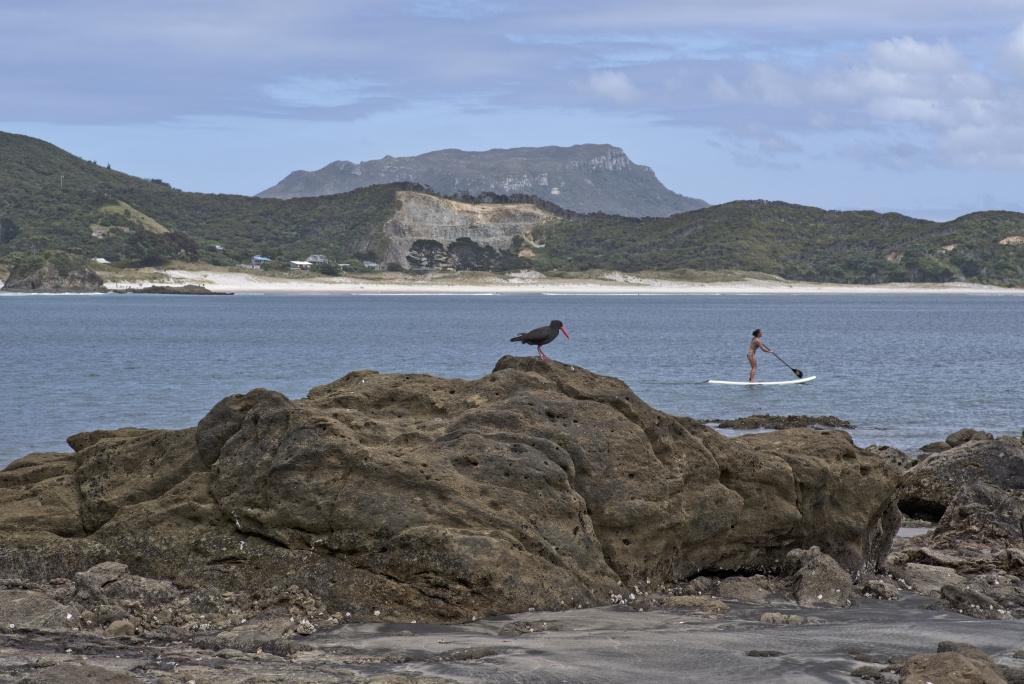 Medland's Beach