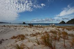 Kaitoke Beach