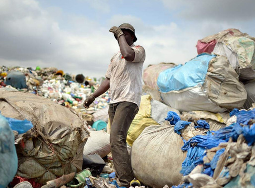 Tanzania to ban plastic bags in bid to tackle pollution Tourists urged to remove disposable carriers