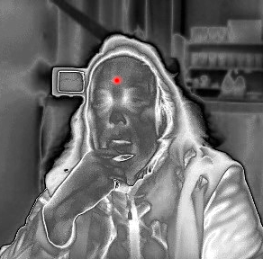 How does a thermal imaging system differ from a thermometer?