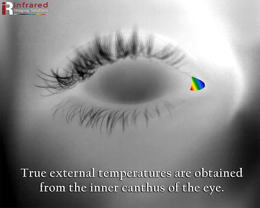 eyebw_color.jpg