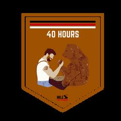 Cross Training: 40 Hours