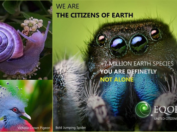 ARE YOU AN EARTH LOVER?
