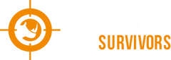 STS logo.png