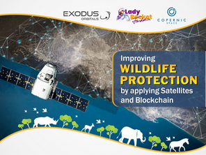 Lady Rocket together with Copernic Space engages satellite technology Startups to protect wildlife.