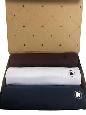Kit 3 Camisetas Básicas na Caixa