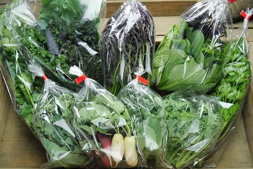 季節の野菜セット Mサイズ