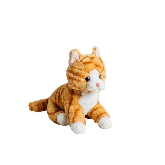 Katt Ginger