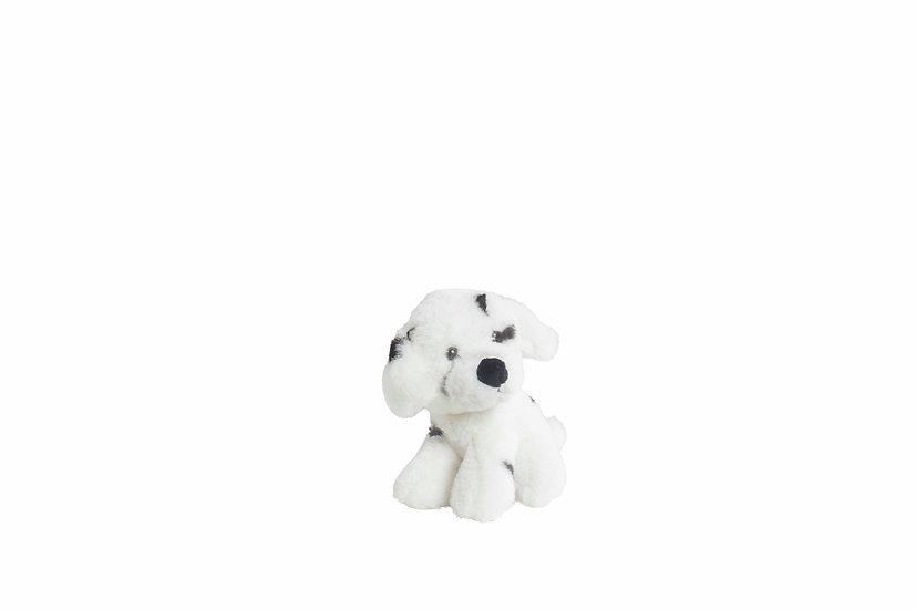Hund Dalmatiner
