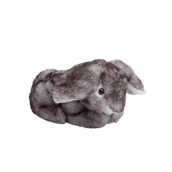 Kanin Bunny & Hoppy