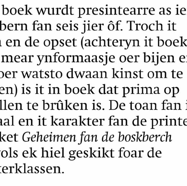 Resinsje Friesch Dagblad - Elizabeth Hietkamp