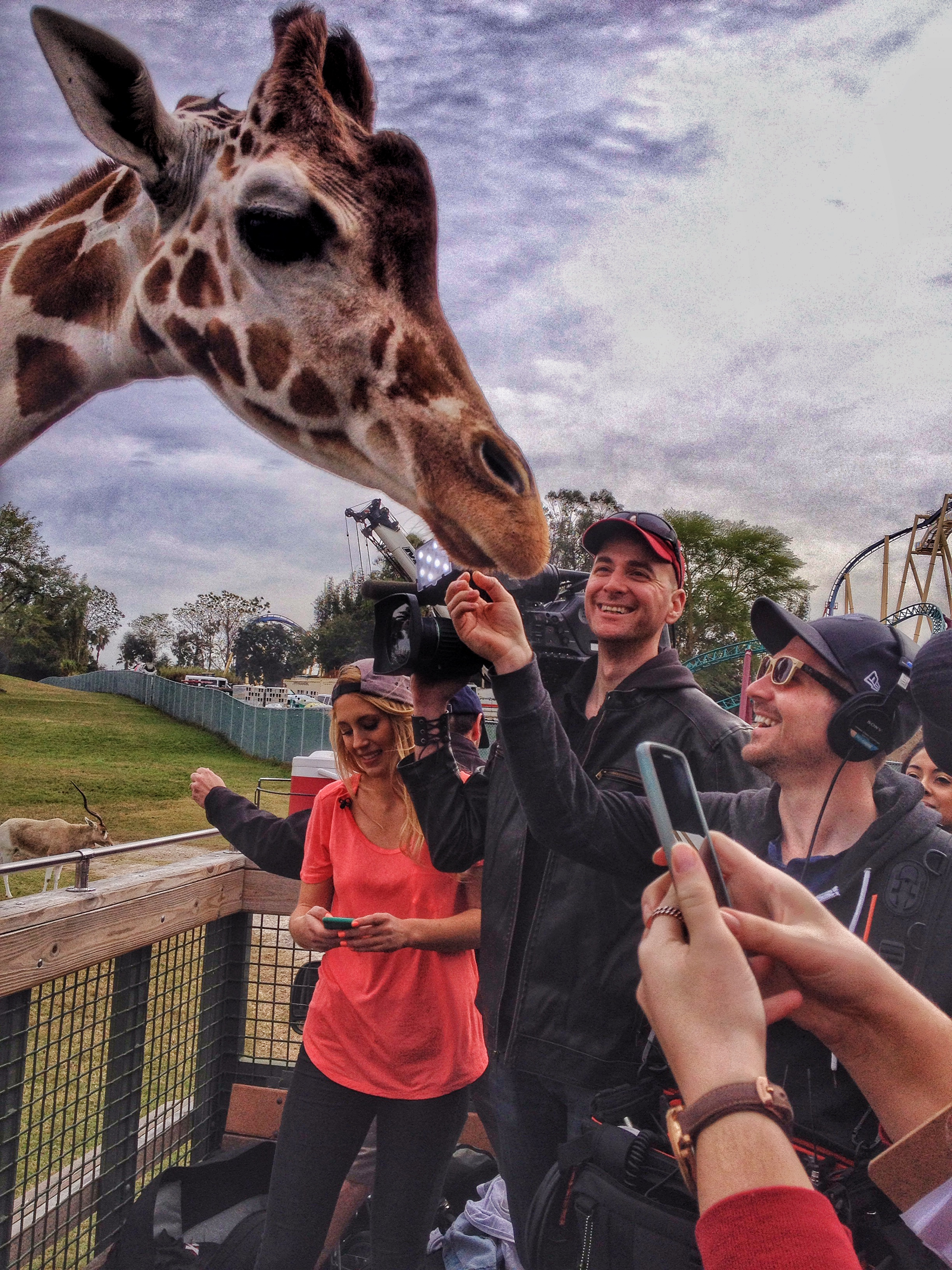 Filming a Giraffe at Busch Gardens